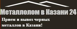 Лом в Казани 24