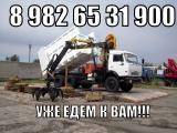 ООО Поллукс